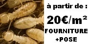 prix termites traitement pas cher termite