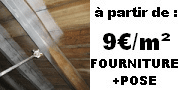 afpah_capricorne_prix_termite_gironde