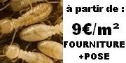 prix termites traitement pas cher termite gironde