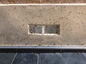 termites ailés qui sortent d'une bouche de ventilation